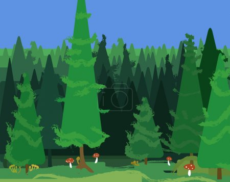 abstract spruce forest landscape