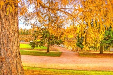 Tsarskoye Selo Park Catherine Palace