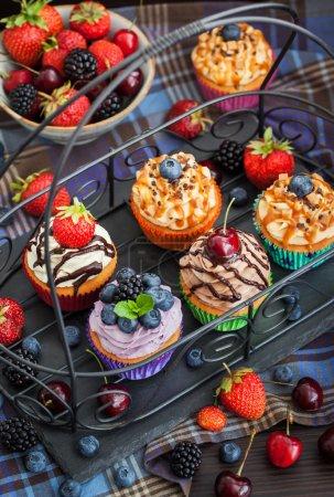 Set von verschiedenen leckeren Cupcakes