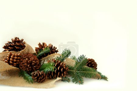 Photo for A collection of Christmas tree evergreen branches, pine cones, and burlap fabric are framing the bottom corner of a white background - Royalty Free Image