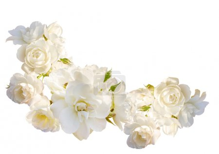Beautiful  horizontal frame with bouquet of white roses with rain drops isolated on white background