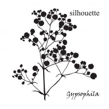 Illustration pour Branche de belle silhouette dessinée à la main gypsophila en noir, blanc et rouge. Illustration vectorielle - image libre de droit