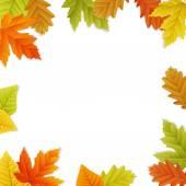 Fall vector leaf border