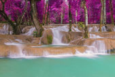 Waterfall in rain forest (Tad Sae Waterfalls at Luang prabang, L
