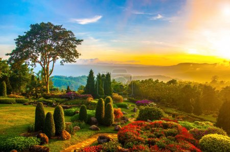 Photo for Beautiful garden of colorful flowers on hill with sunrise in the morning. - Royalty Free Image