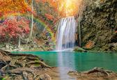 """Постер, картина, фотообои """"замечательный водопад с радугами и красным листом в большом лесу в"""""""