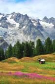 Italian landscape