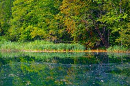 Early autumn landscape at Plitvice Lakes, Croatia,...