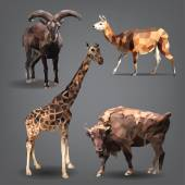 Animals in  geometrical style