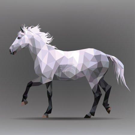 White horse  illustration