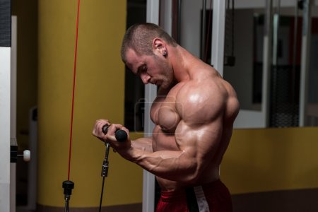 Photo for Young Bodybuilder Doing Heavy Weight Exercise For Biceps - Royalty Free Image