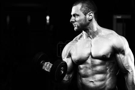 Photo for Bodybuilder Working Out Biceps - Dumbbell Concentration Curls - Royalty Free Image