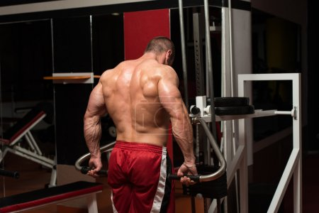 Young Bodybuilder Doing Heavy Weight Exercise For Trapezius