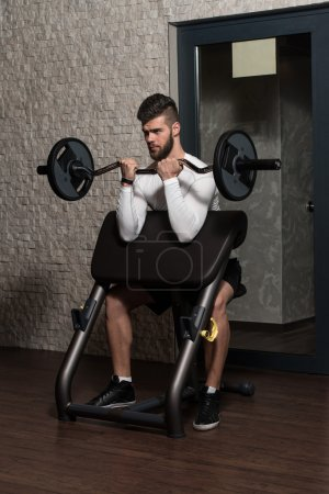 Handsome Man Doing Biceps Exercises In The Gym