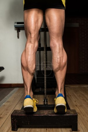 Training Strong Legs Calf