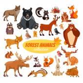 Set of cartoon forest animals