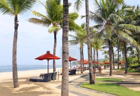 Beach chairs on the beach...
