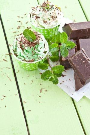 Photo pour Yaourt glacé à la menthe et chocolat noir - image libre de droit