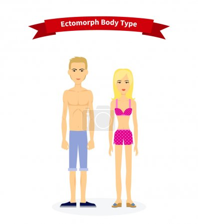 Illustration for Ectomorph body type woman and man. People health, slim and thin skinny, physique adult healthy figure, human person, lean and slender, structure normal illustration - Royalty Free Image