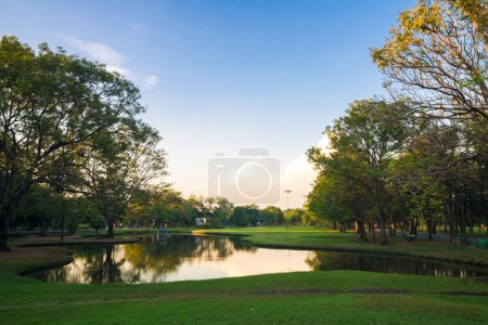 Photo for Sunset at public green park with pond natural background - Royalty Free Image