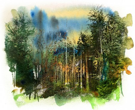 Forest landscape, watercolor and mixed media