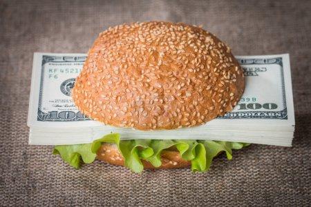Hamburger with dollar bank notes