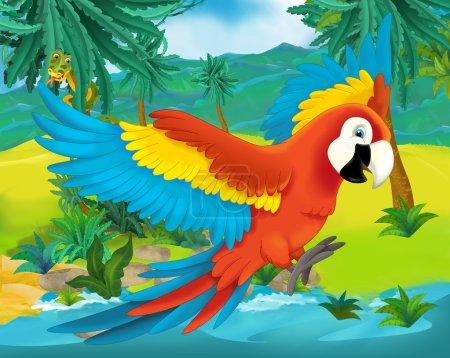 Photo pour Scène de bande dessinée - illustration d'animaux - perroquet - Amérique du Sud sauvage pour les enfants - image libre de droit