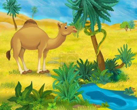 Cartoon wild camel