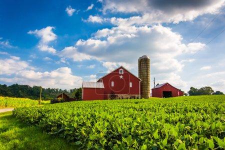 Photo for Beautiful farm field and barn on a farm near Spring Grove, Pennsylvania. - Royalty Free Image