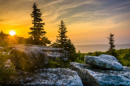 Sunrise at Bear Rocks Preserve, in Dolly  Sods Wilderness, Monon