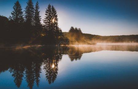 Foto de El sol brilla a través de los pinos y la niebla al amanecer, en el lago perilla spruce, bosque nacional monongahela, virginia Occidental. - Imagen libre de derechos