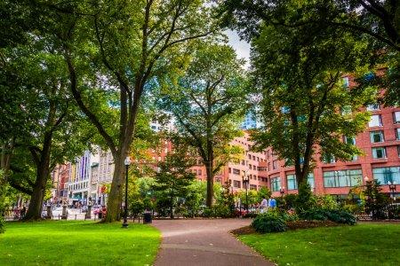 Walkway in the Boston Public