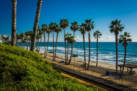 View of railroad tracks and palm trees along the beach in San Cl