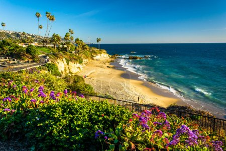 Photo for Flowers and view of the Pacific Ocean at Heisler Park, in Laguna Beach, California. - Royalty Free Image