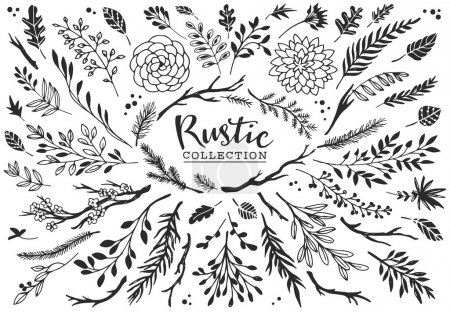 Illustration for Rustic decorative plants and flowers collection. Hand drawn vintage vector design elements. - Royalty Free Image