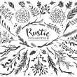 Rustic decorative plants and flowers collection. H...