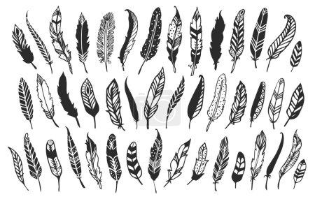 Rustic decorative feathers.