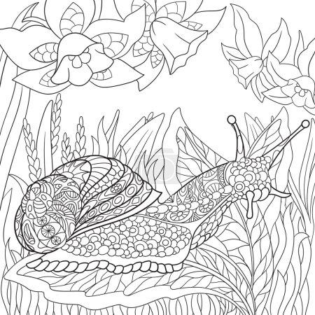 Zentangle stylized snail