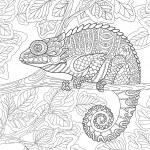 Zentangle stylized cartoon chameleon sitting on a ...