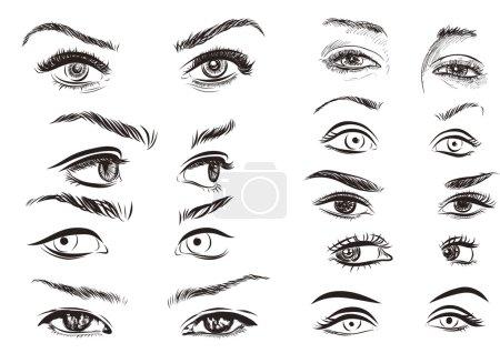 Illustration pour Collection d'yeux femme dessinés à la main sur fond blanc. EPS vectoriel - image libre de droit