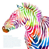 Tierische Illustration Aquarell Zebra Kontur