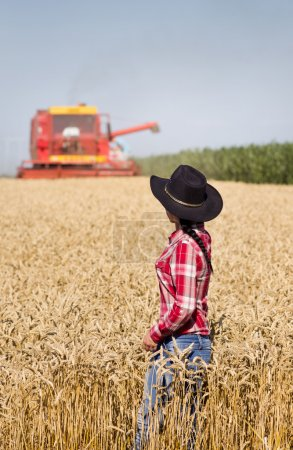 Photo for Rear view of beautiful young woman in plaid shirt and with hat standing in golden wheat field during harvest, combine harvester in background - Royalty Free Image
