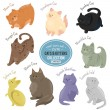 Постер, плакат: Cute cats and kittens depicting different fur color and breeds