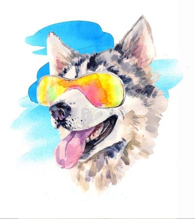 Photo pour Chien husky sibérien aquarelle dans des lunettes de soleil fraîches. Mignon chien de berger sur le reste. Bel animal mignon de l'Alaska. Illustration dessinée à la main inhabituelle pour affiches de mode, impression, textiles, bannières, design de carte - image libre de droit