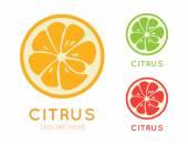 Kinds of citrus stylish icon Juicy fruit logo