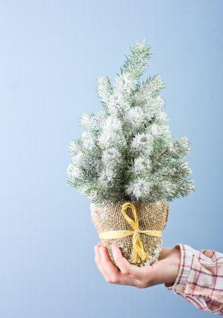Photo pour Beau Noël sapin sur fond bleu - image libre de droit