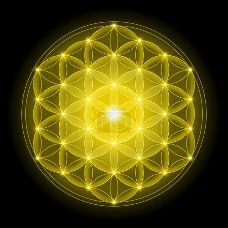 Photo pour Fleur de Vie Dorée sur fond noir, symbole spirituel et Géométrie Sacrée depuis les temps anciens . - image libre de droit