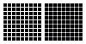 Hermann grid and scintillating grid illusion