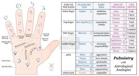 Palmistry Astrology Basic Analogies Chart