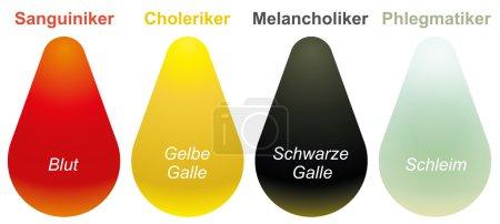 Sanguine, choleric, melancholic and phlegmatic - t...